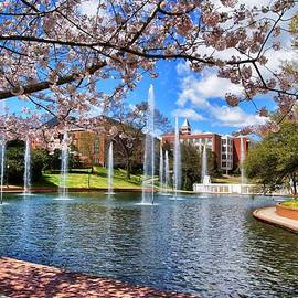 Richie Knight - Clemson University Springtime