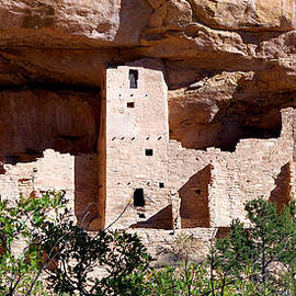 Cliff Palace 2 - Mesa Verde by Douglas Taylor