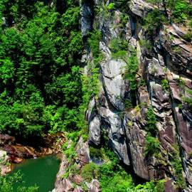 Greg Patzer - Cliffs of Green