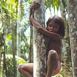 Jon Delorme - Climbing Trees