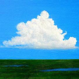 Cloud Over Wetlands by Jim Whalen