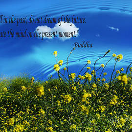 Cloud Reflection With Buddha Quote by Sarah Broadmeadow-Thomas