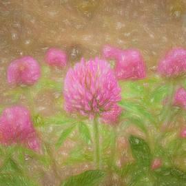 Clover Flower by Kim Hojnacki