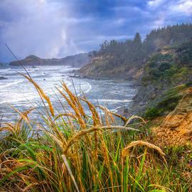 Coastal Oregon by Debra and Dave Vanderlaan