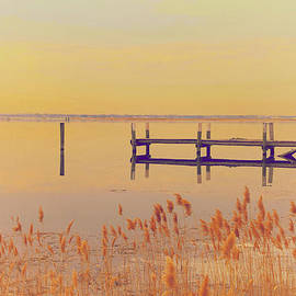 Karol Livote - Coastal Winter
