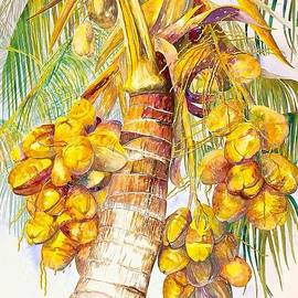 Coconut Palm by AnnaJo Vahle