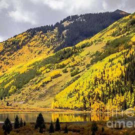 Colorado Countryside by Janice Pariza