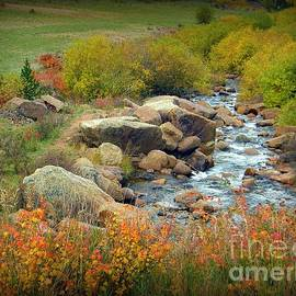 Colorado Fall Stream 2 by Michelle Frizzell-Thompson