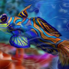 Jack Zulli - Colors Below 2