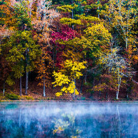 Colors In Early Morning Fog by Parker Cunningham