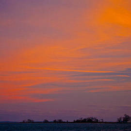 Colors In The Sky by Karol Livote