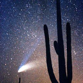 Comet Hale - Bopp With Saguaro by Douglas Taylor