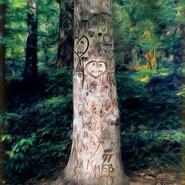 Joe Paradis - Congressional Woods