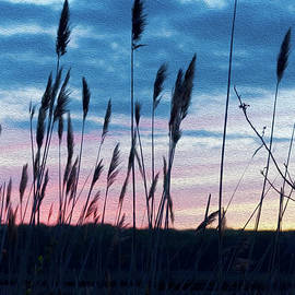 Connecticut Sunset with Reeds and Swirls by Marianne Campolongo