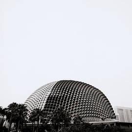 Contemporary Singapore by Shaun Higson