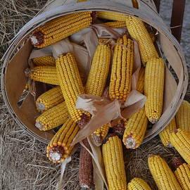 Gustave Kurz - Corn Time