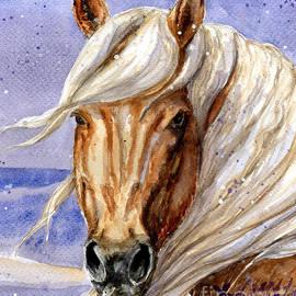 Linda L Martin - Corona Band Stallion of Sand Wash Basin HMA