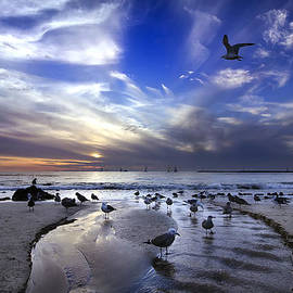 Corona del Mar by Sean Foster