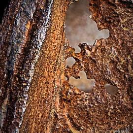 Corrosion by Nadalyn Larsen