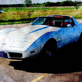 Corvette 2 by Anita Burgermeister