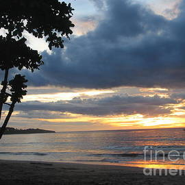 Costa Rica Palm Sunset - Seascape by Shelia Kempf