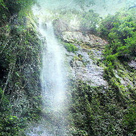 Costa Rica Waterfall by Peggy Collins
