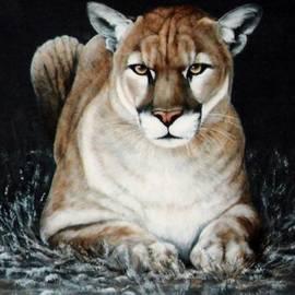 Cougar Waiting by DiDi Higginbotham