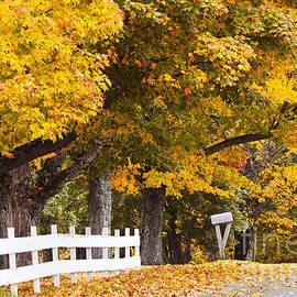 Alan L Graham - Country Autumn