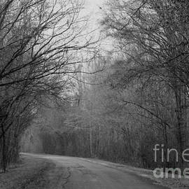 Country Road by Kimberly Saulsberry