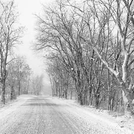 Sarah Rodefeld - Country Roads