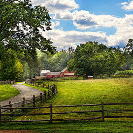 Mike Savad - Country - The pasture