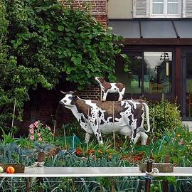 Barbie Corbett-Newmin - Cow on Cow Garden Art