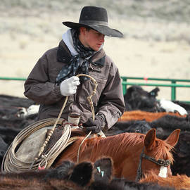 Diane Bohna - Cowboy Signature 9