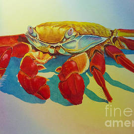 Colorful Crab  by Greg and Linda Halom