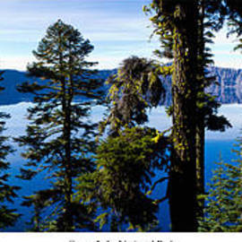 Twenty Two North Photography - Crater Lake through Pines