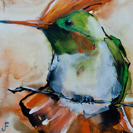 Jani Freimann - Crested Croquette Hummingbird