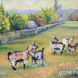 Croatian Goats by Raija Merila