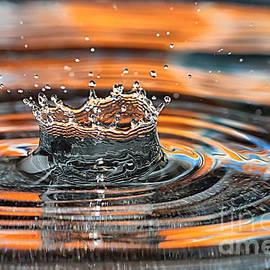 Crown Shaped Water Drop Macro by Teresa Zieba