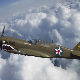 Adam Romanowicz - Curtiss P-40 Warhawk Flying Tigers