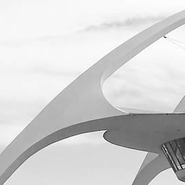 Fei Alexander - Curved Reach