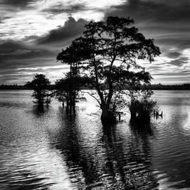 Dan Carmichael - Cypress Sunrise - North Carolina
