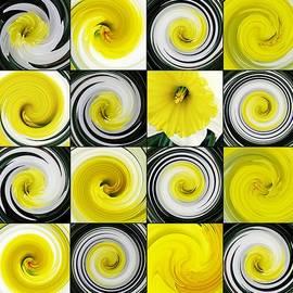 Daffodil Spring Mosaic by Sarah Loft