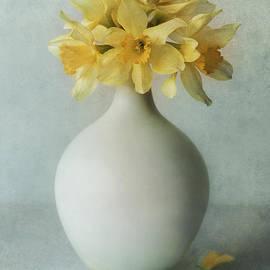 Daffodils in a white flowerpot by Jaroslaw Blaminsky