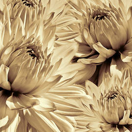 Jennie Marie Schell - Dahlia Flowers Bouquet Sepia