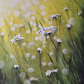 Daisies by Dominika Stec