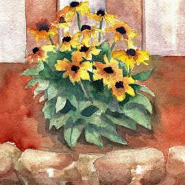 Blenda Studio - Daisy Flower Garden