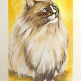 Dallas My Ragdoll Kitty by Sandra Valentini