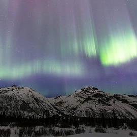 Sam Amato - Dancing Aurora Borealis
