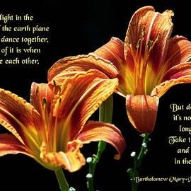 Mike Flynn - Dancing Together