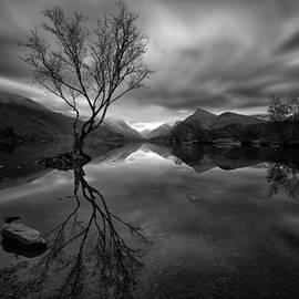 Gerard Pearson - Dark Reflections